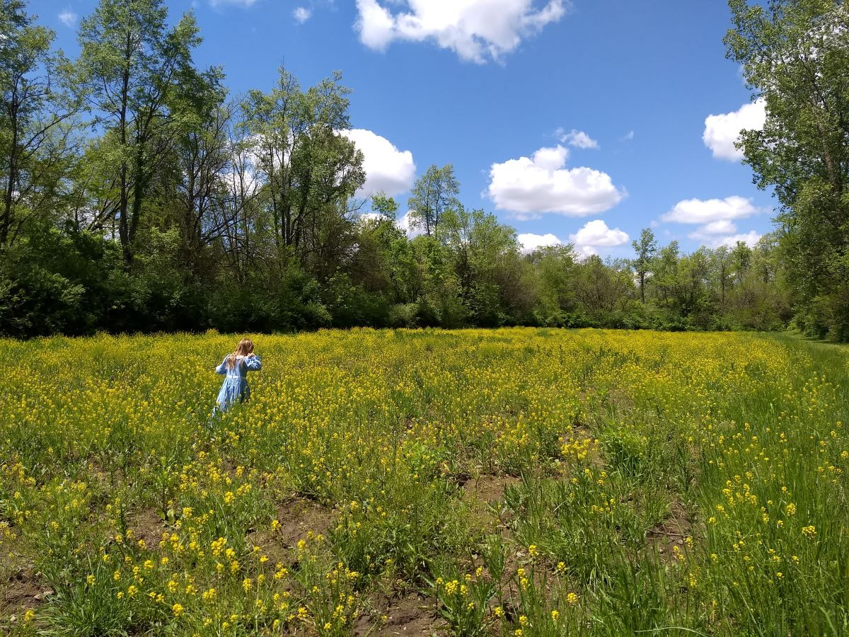 Amanda McGill.field.amcgill.jpg