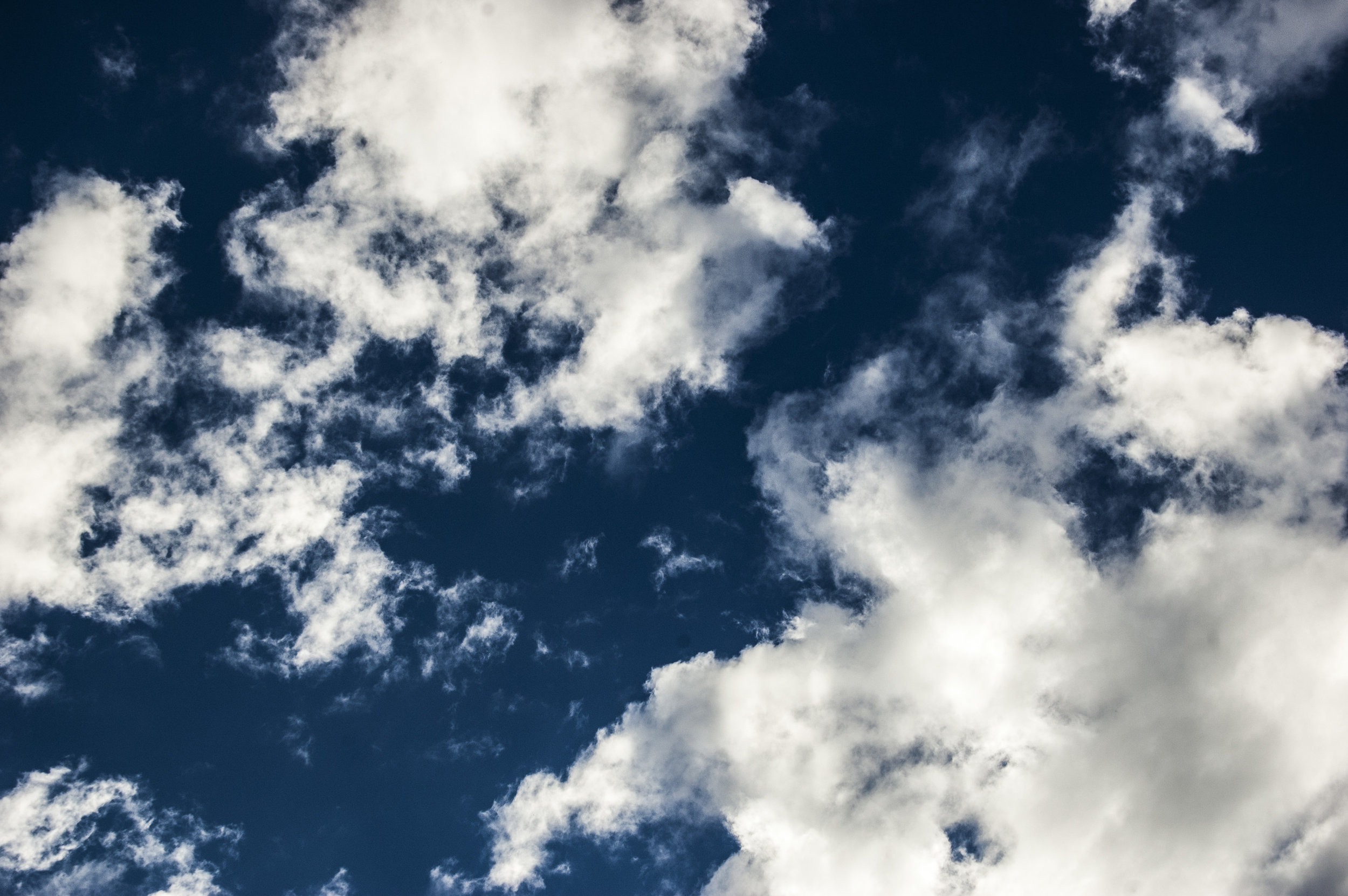 Look up today. - Meditate on the exalted, living Christ in glory who will surely return for us.