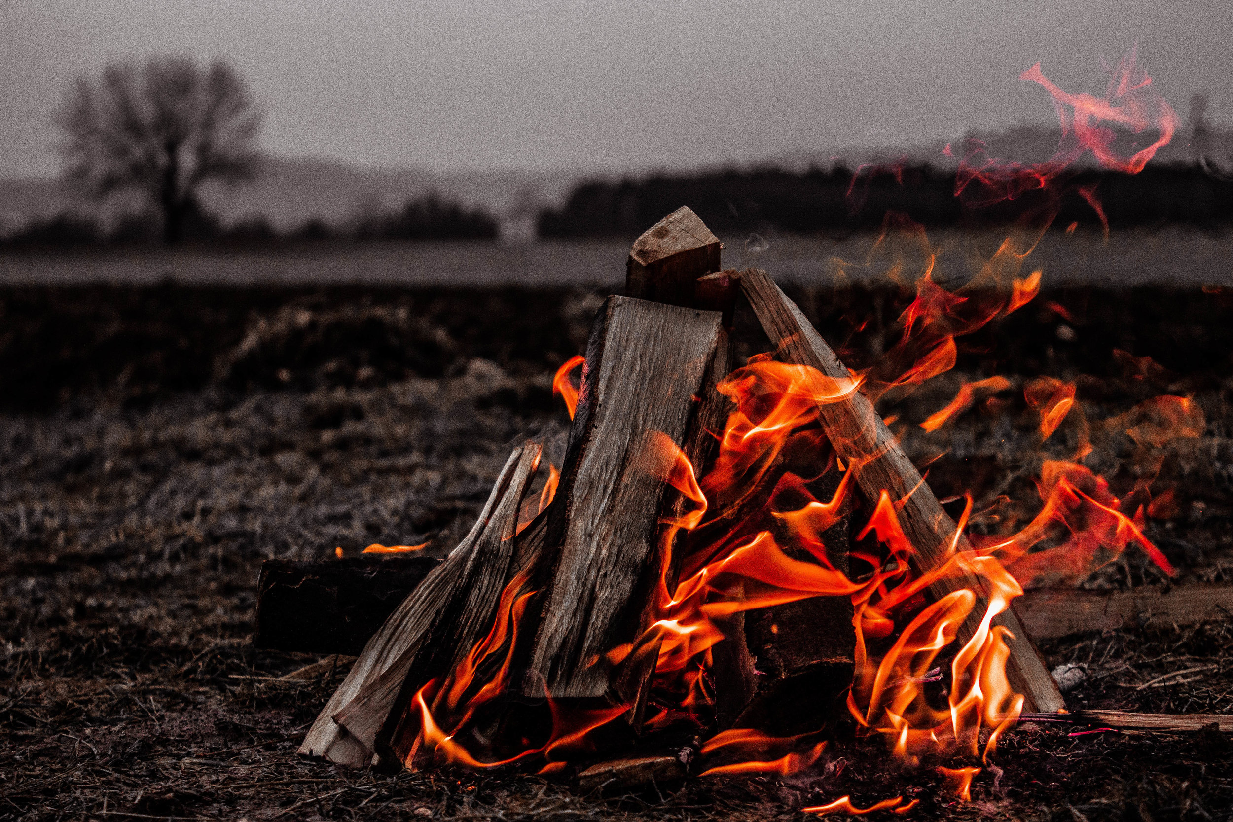 Enjoy a campfire this evening. -