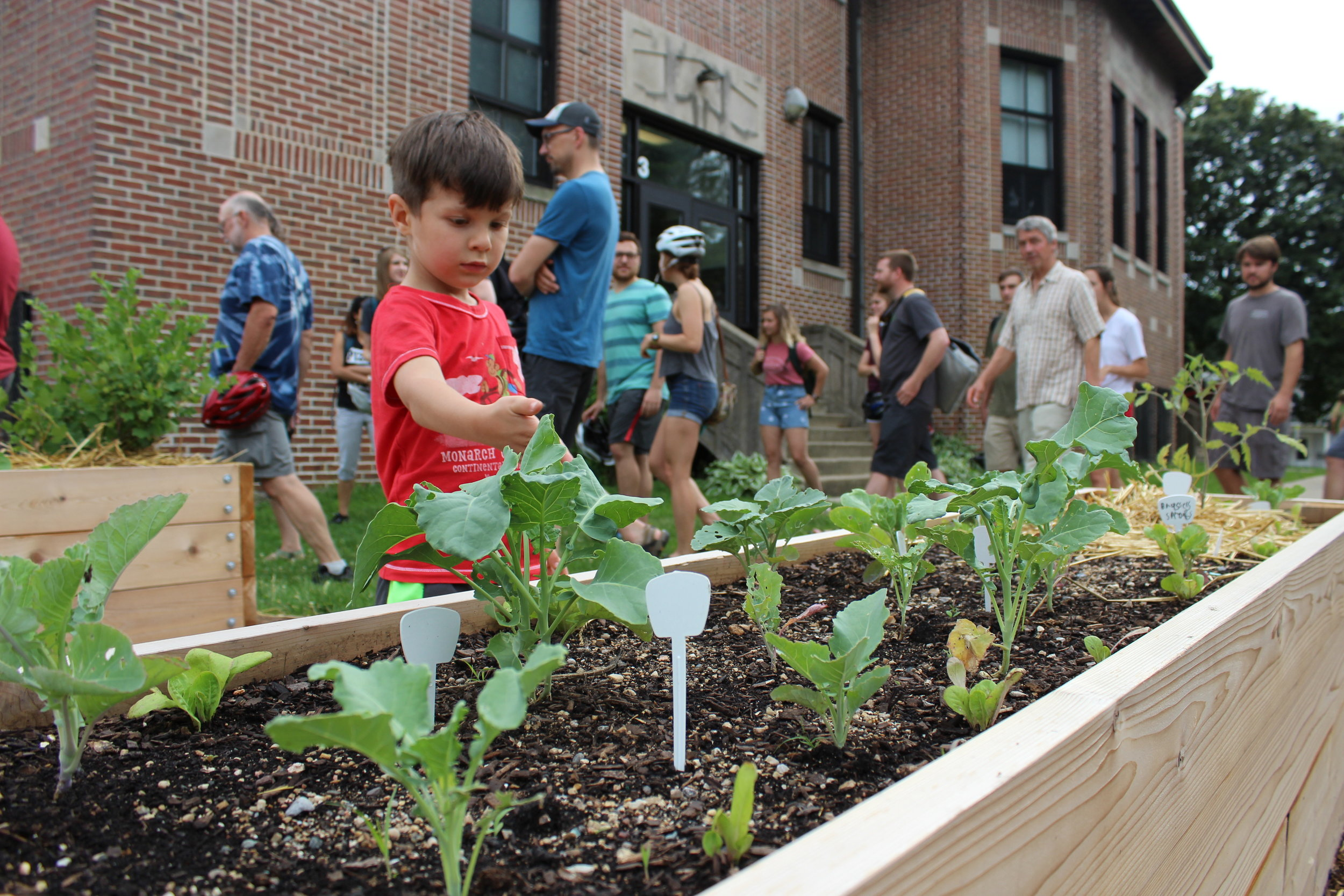 Lowell Elementary's raised bed gardens