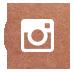 Follow Fifi On I  nstagram
