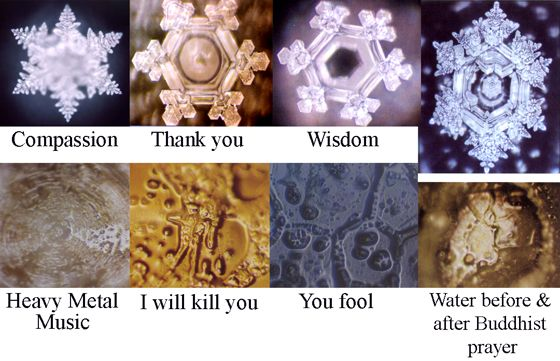 Amazing that this study proved this time and time again. They look like snowflakes..