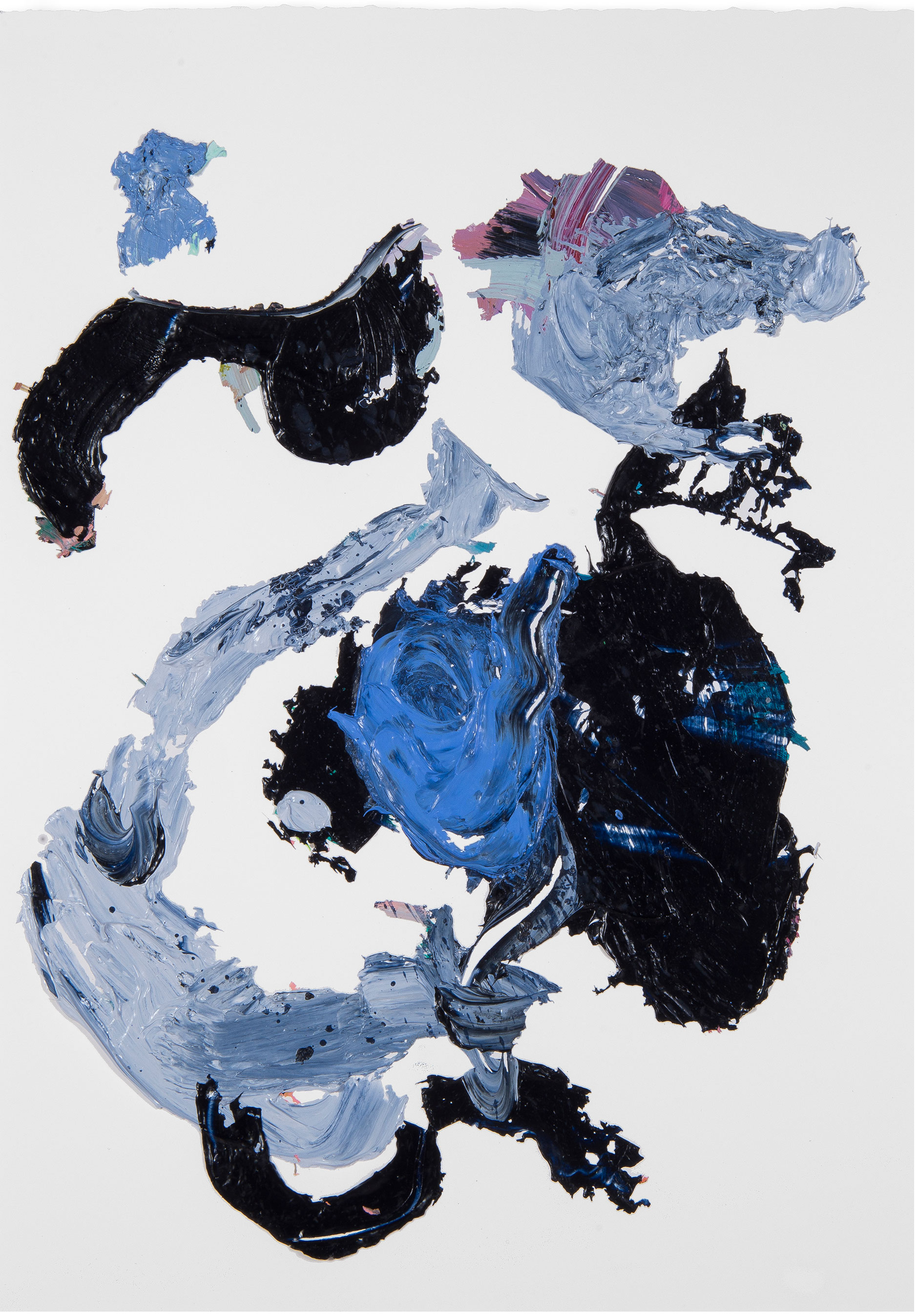Blue/Black Rose 2
