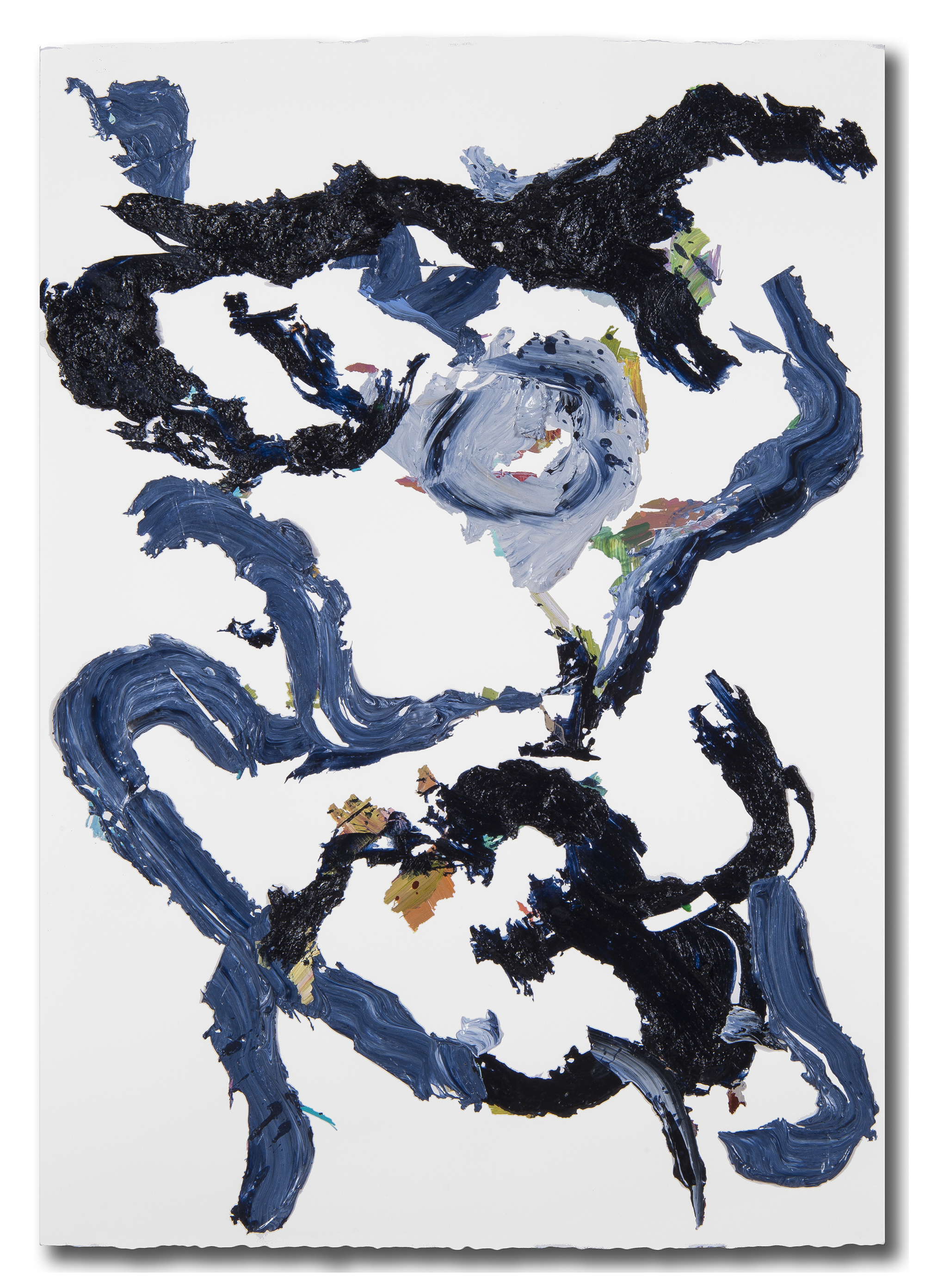 Blue/Black Rose Series 1