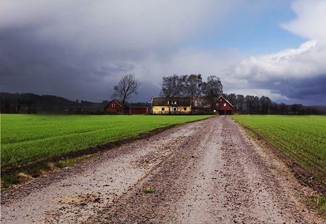 I shot this farm house in Sweden. I'm thinking it's time for me to head back. So beautiful there!! #sweden #swedishfarmhouse #falkenbergsweden #travel #travelphotography #seetheworld #photography #photographer