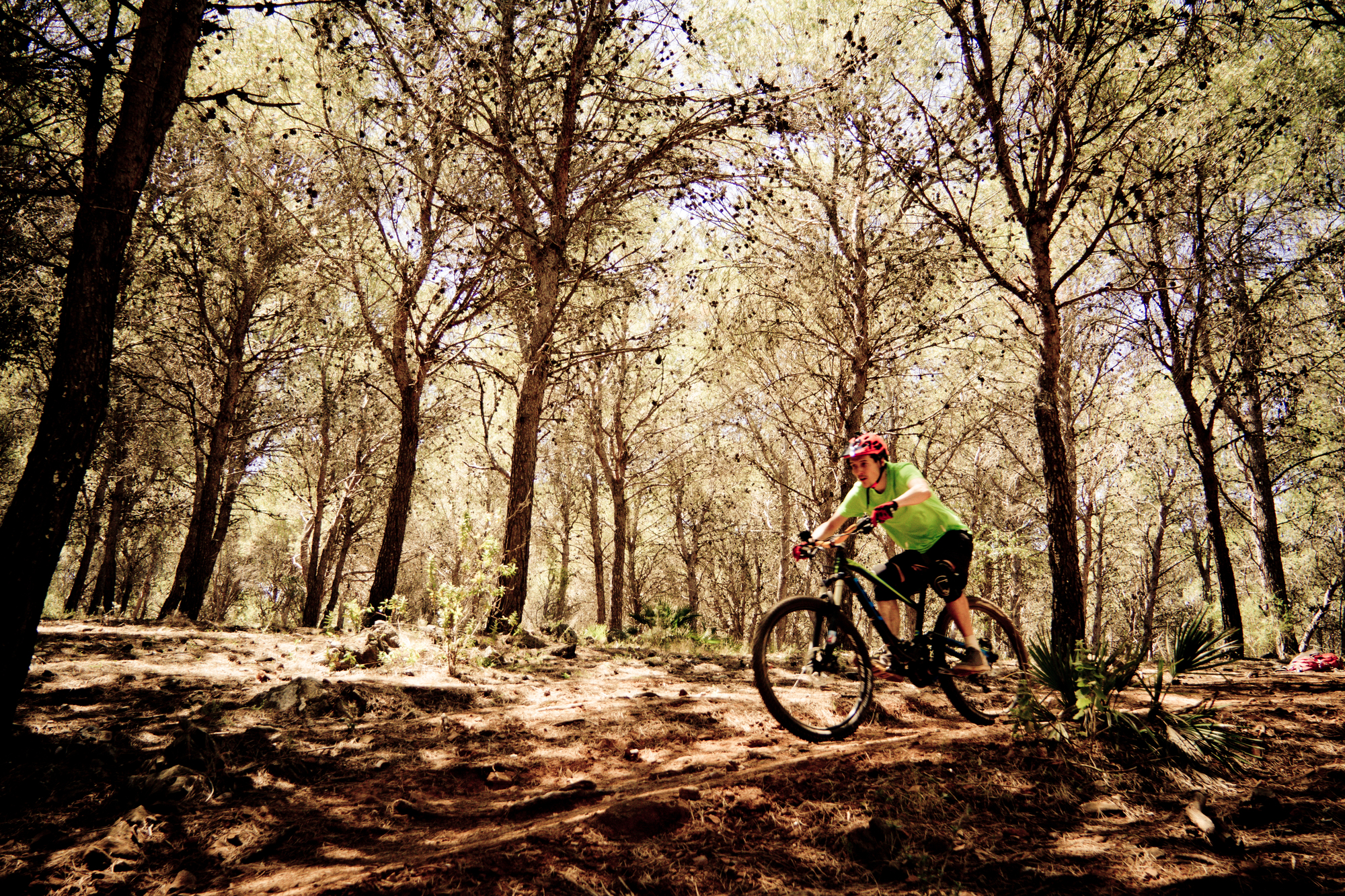 The trails located around the city of Alhaurín el Grande will make every rider smile