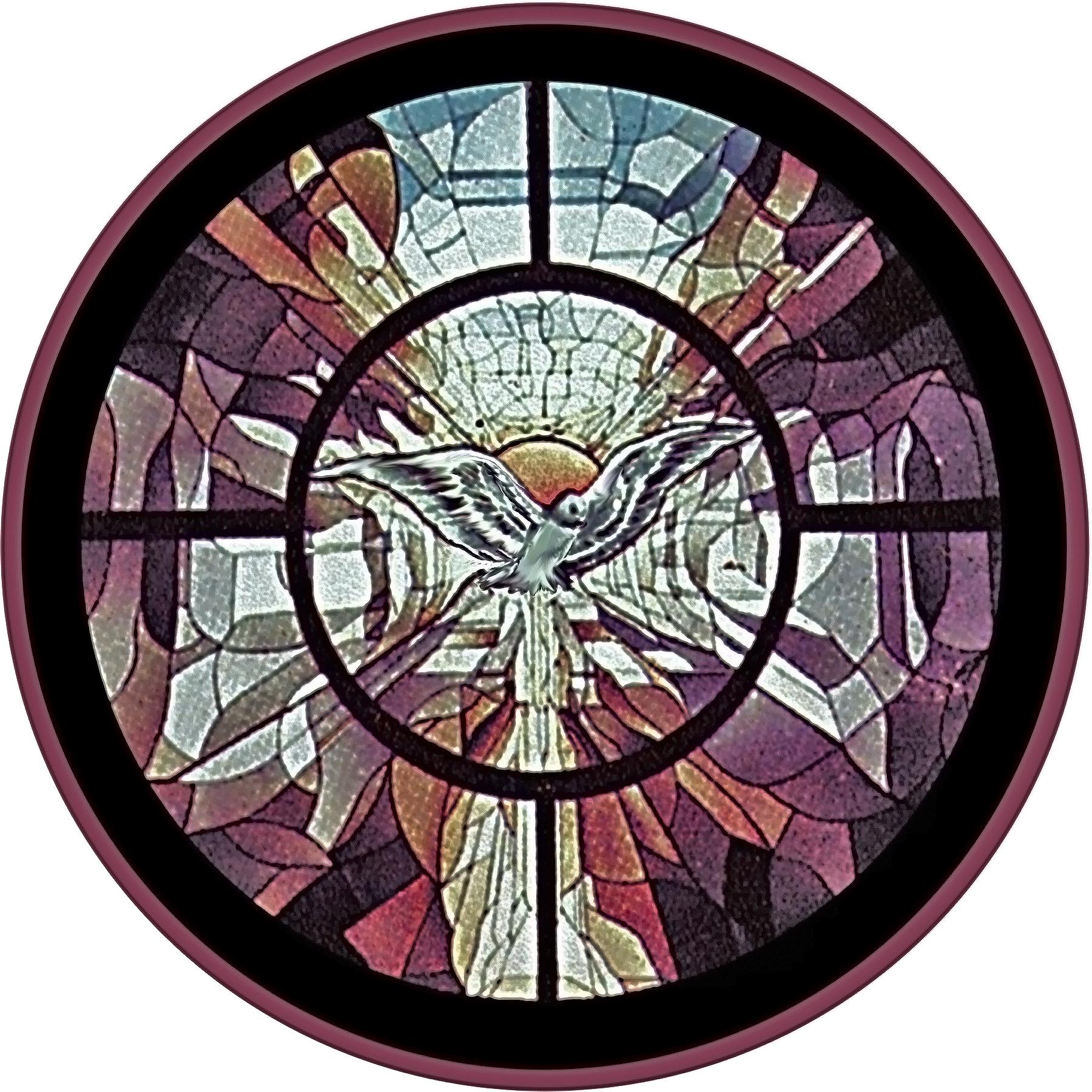 7 st.Magdalene rose .jpg