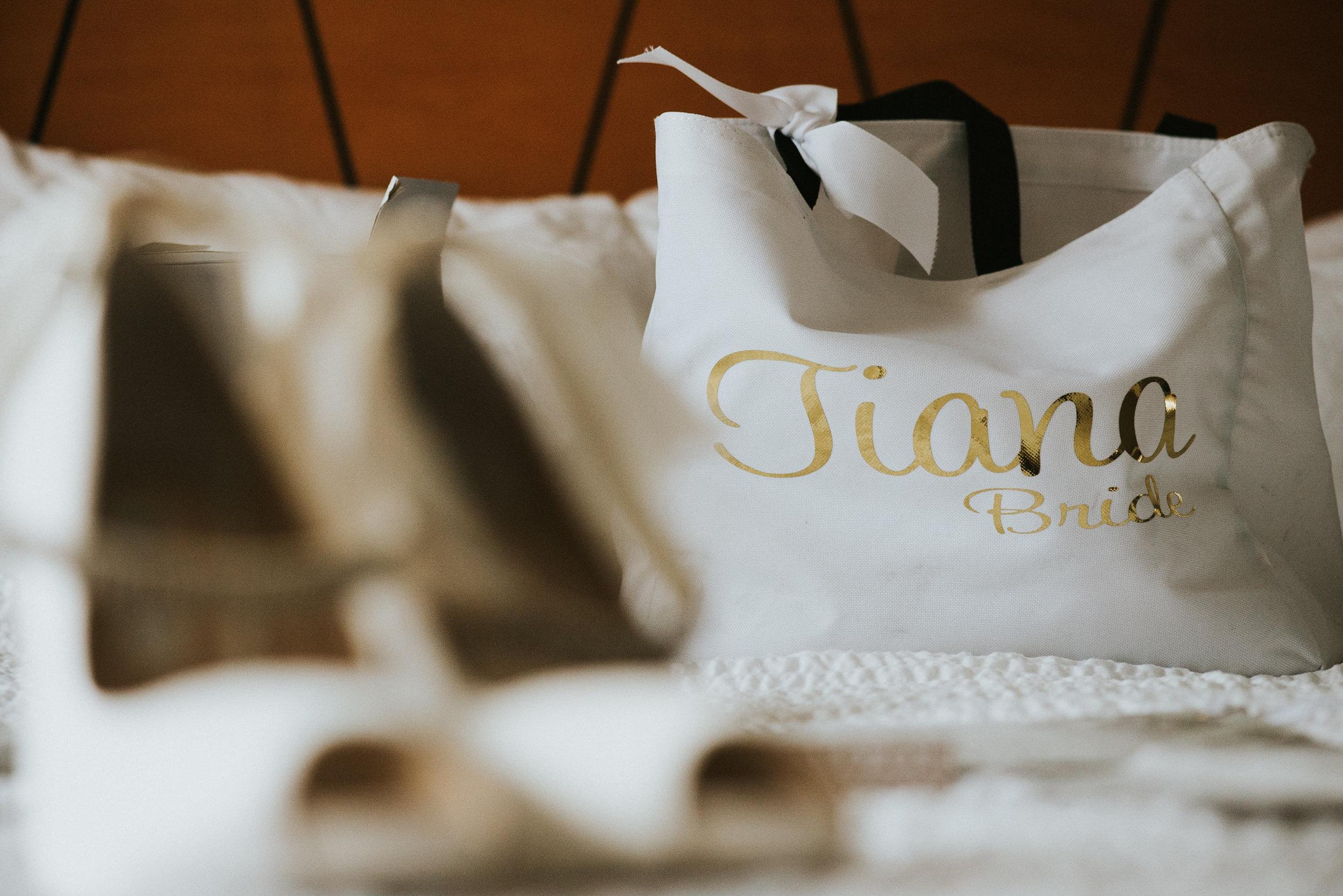 Tiana-and-Danny-Wedding-191.jpg