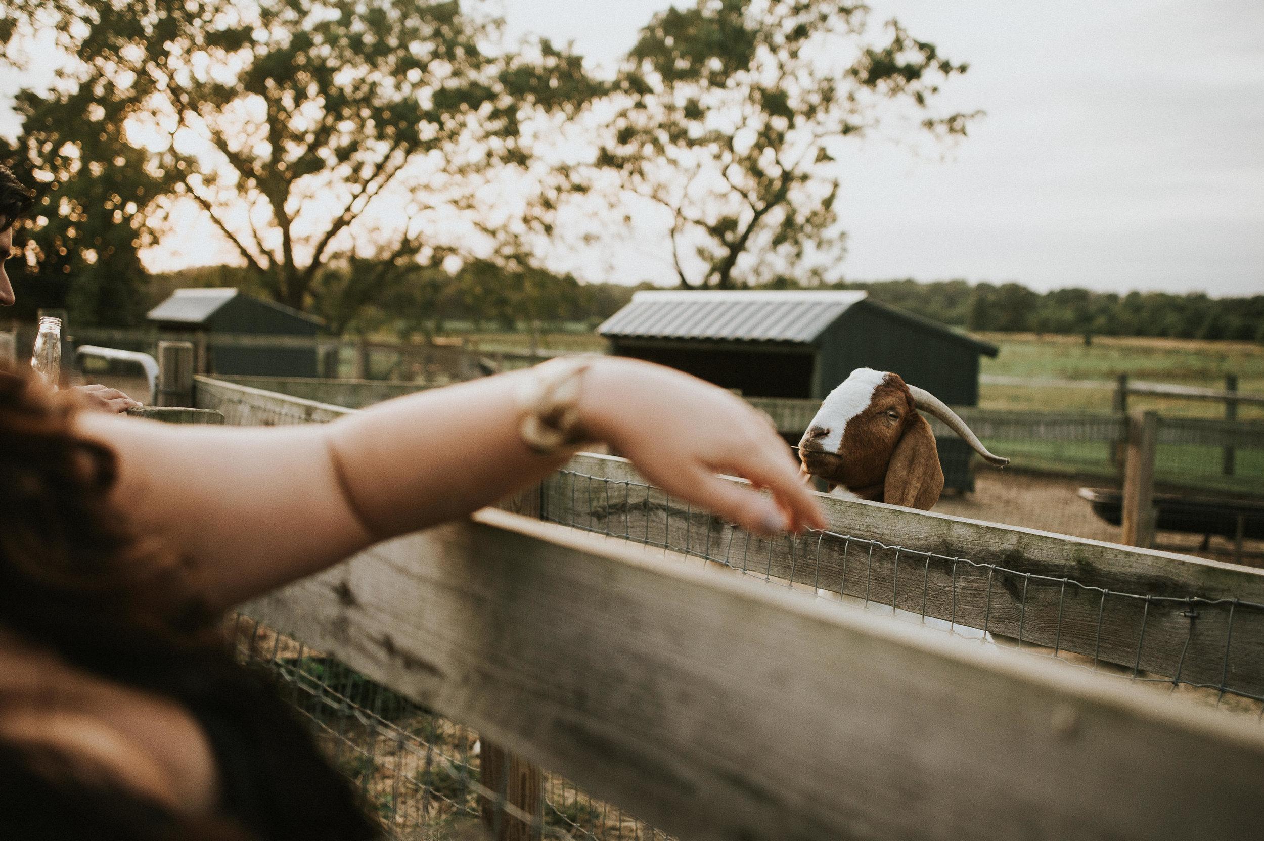 Johnson-Locust-Hall-Farm-Wedding-Christine-Kevin-1082.jpg