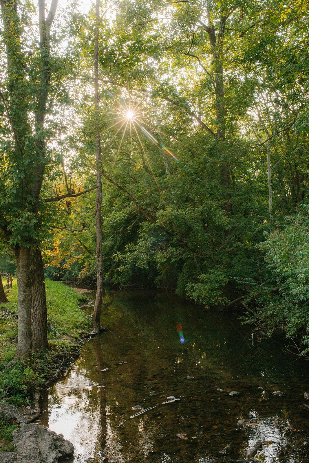 greenwood-049.jpg