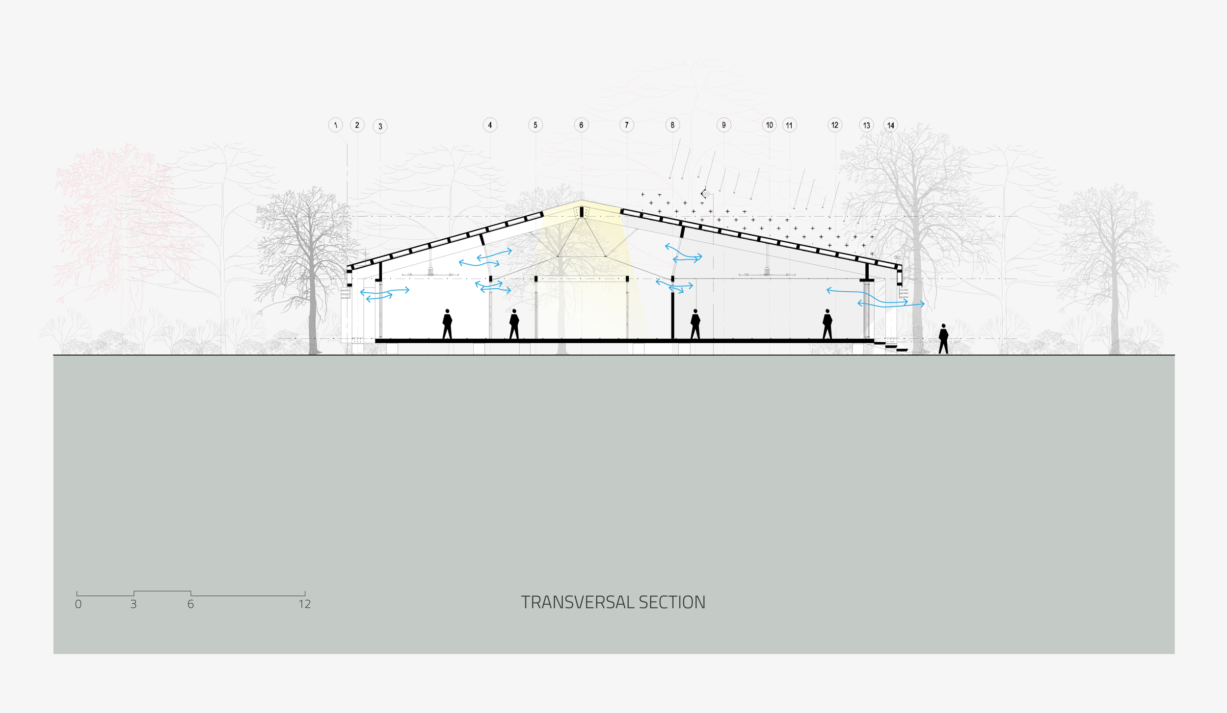 06_TRANSVERSAL-SECTION.png
