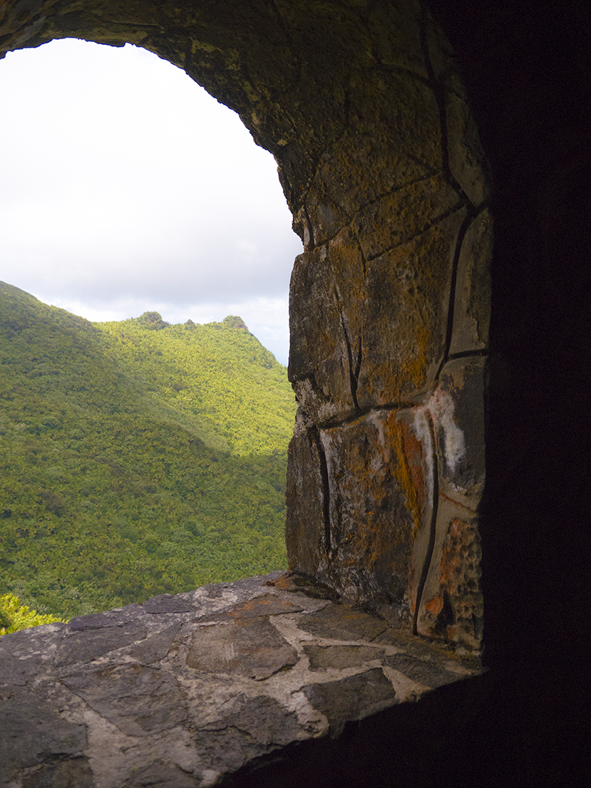 El Yunque National Forest.