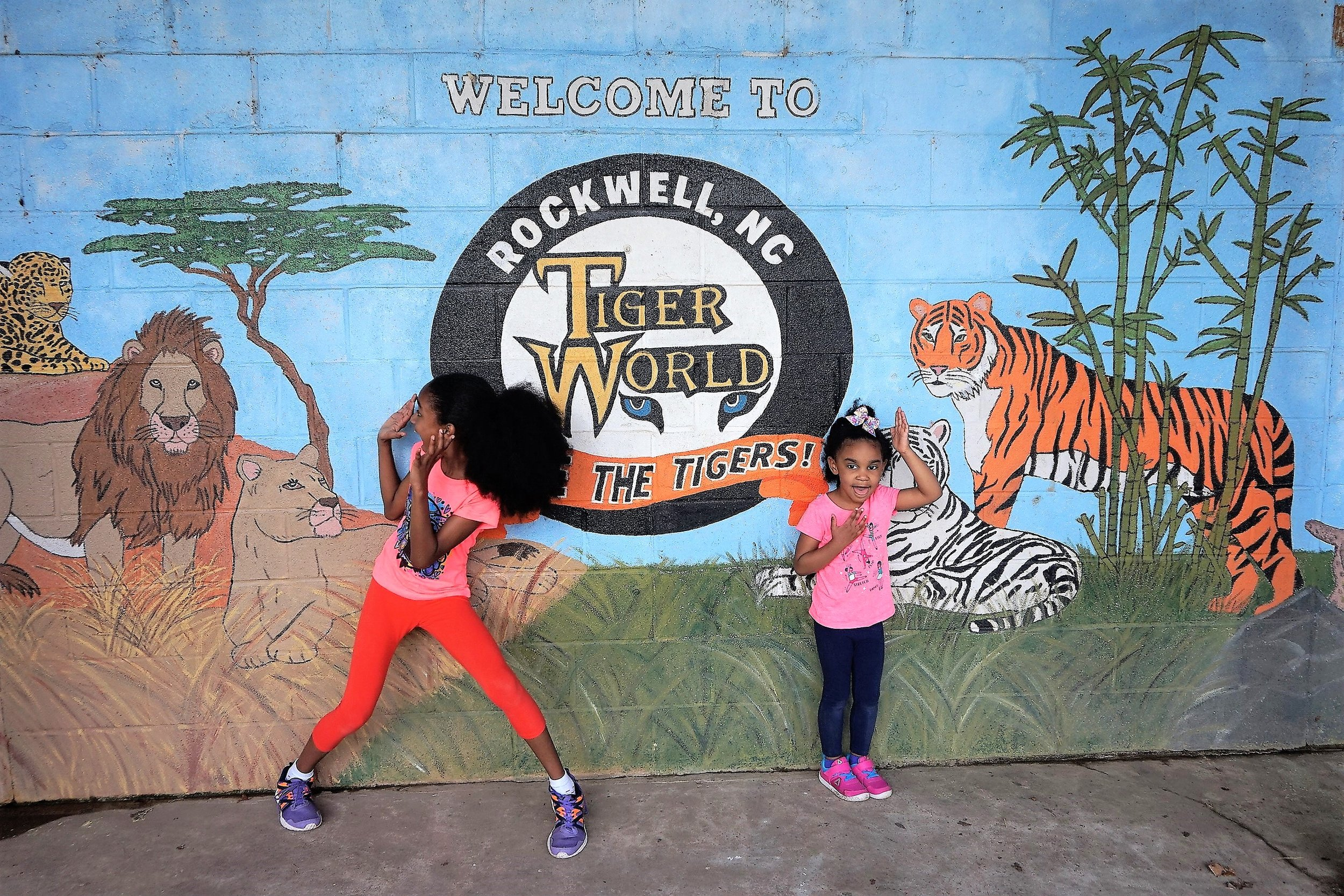 Visit Tiger World -