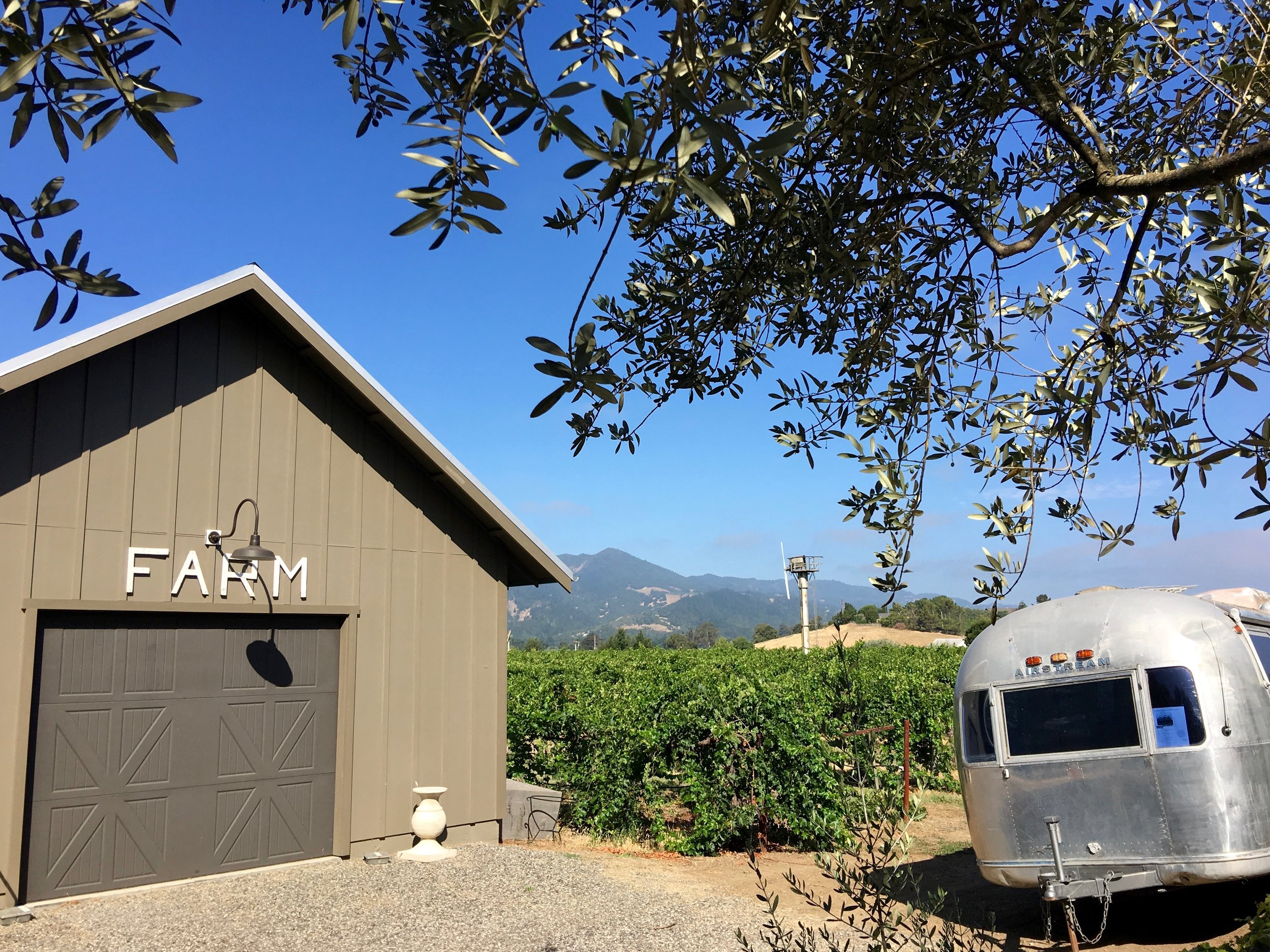 Beautiful Oakville vista with one of their two recently acquired Airstreams soon to be renovated for tasting experiences ( Photo: Mike Casey,The 29 Napa )