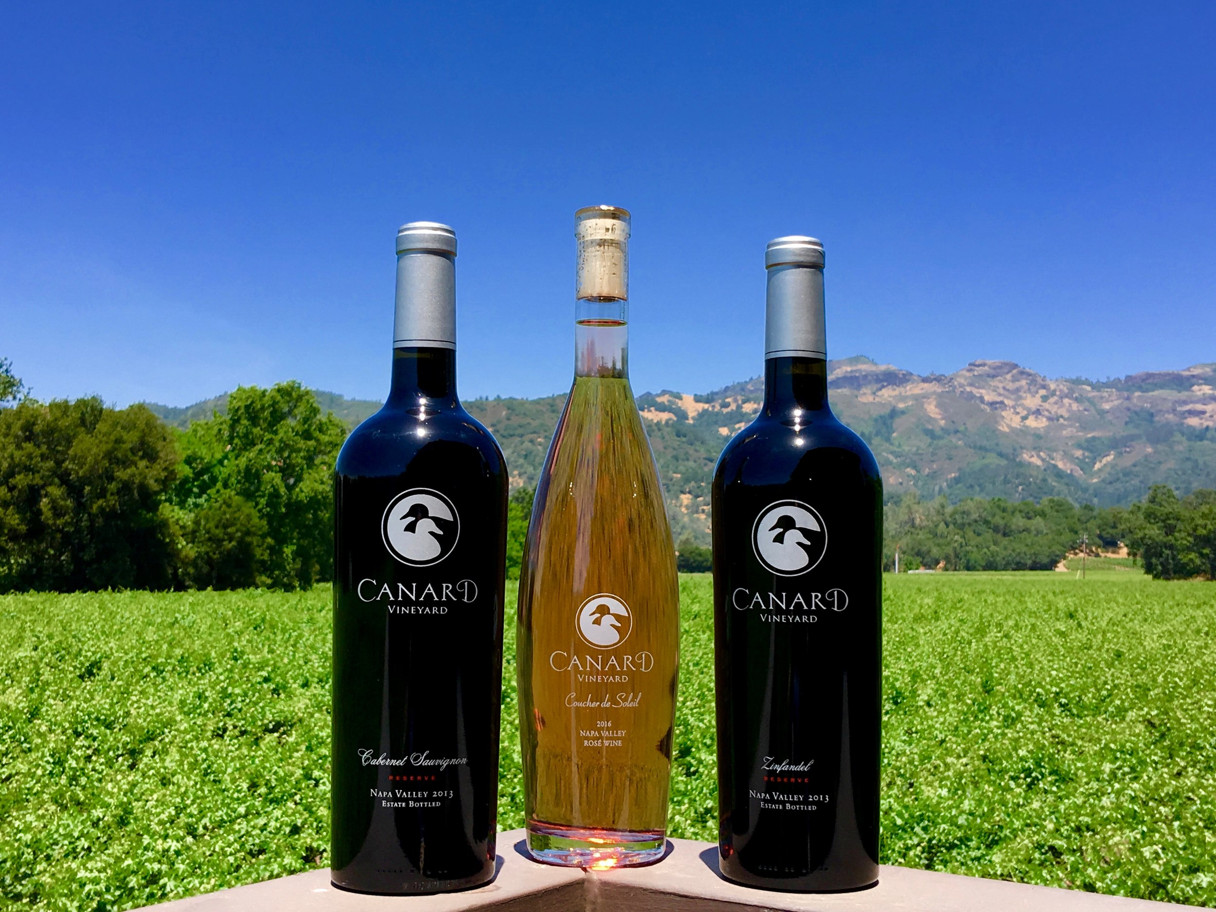 A triptych of wine and mountains ( Photo: Mike Casey, The 29 Napa )