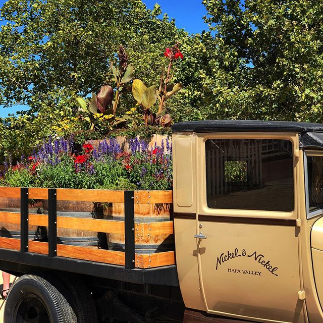 KEEP ON TRUCKIN' - Love the @nickelandnickelwinery antique stakebed truck, such the perfect touch to their gorgeous farm estate. Wonder if it also makes deliveries? 🍇👍 • #the29napa #handpickednapa #napavalley #winecountrylife #winetasting #winemaking #winecountry #winecountryliving #winelover #napa #vino #winemaker #winecountrystyle #winelife #napalife #napa #nickelandnickel #winecountrylifestyle