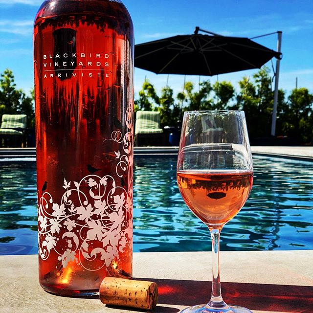 SUMMER FINALE - How is it Labor Day weekend already?! We hope you enjoy yours whether poolside, beach  front or backyard bbq. Let us know what you're cracking open to celebrate the summer of 2019! • #the29napa #handpickednapa #napavalley #winecountrylife #winetasting #winemaking #winecountry #winecountryliving #winelover #napa #vino #winemaker #winecountrystyle #winelife #napalife #napa