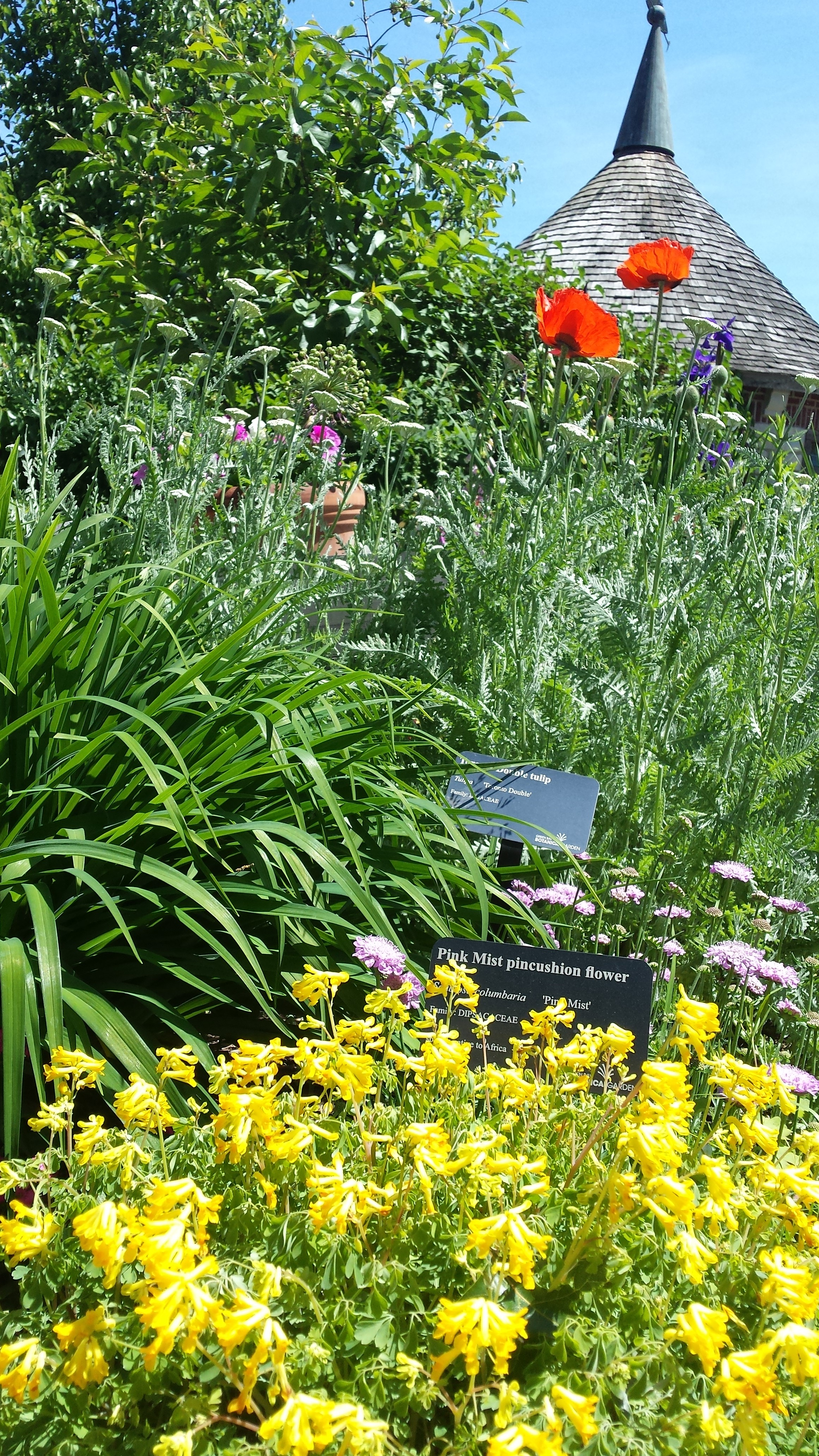 Green Bay botanical gardens; photo by Beth Dolar