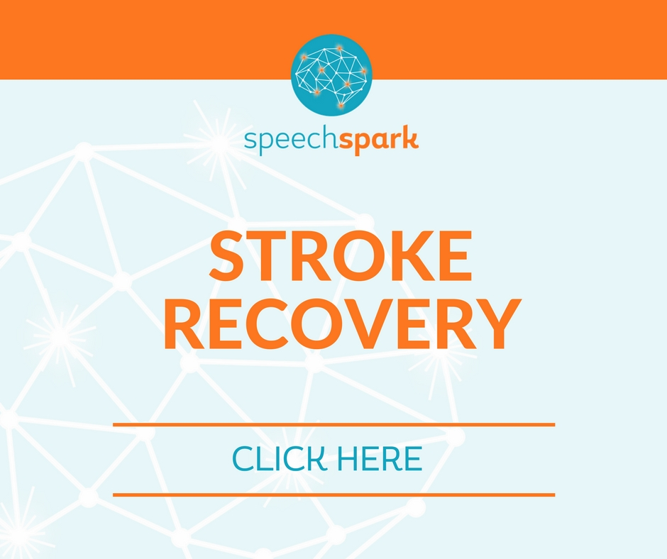 Stroke Recovery- aphasia and apraxia treatment - Green Bay and De Pere, Wisconsin