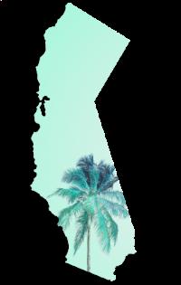los-angeles-california-palm-trees