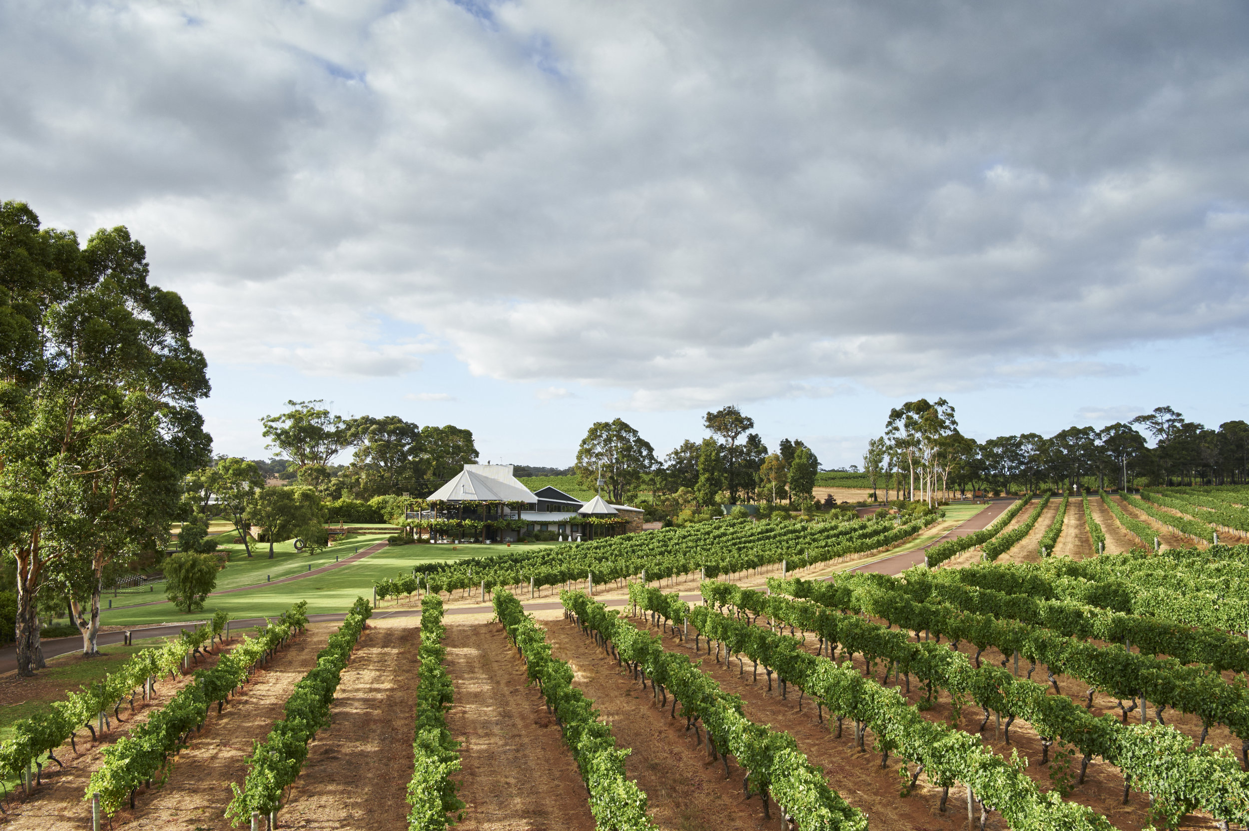 Vasse Felix Vines and Restaurant!