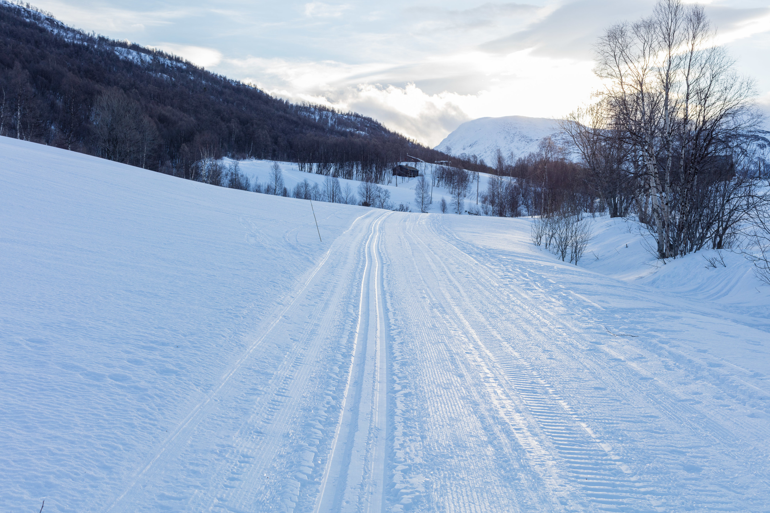 Bortistu-Storlidalen-Oppdal-Norge-Sven-Erik-Knoff-FotoKnoff-71.jpg