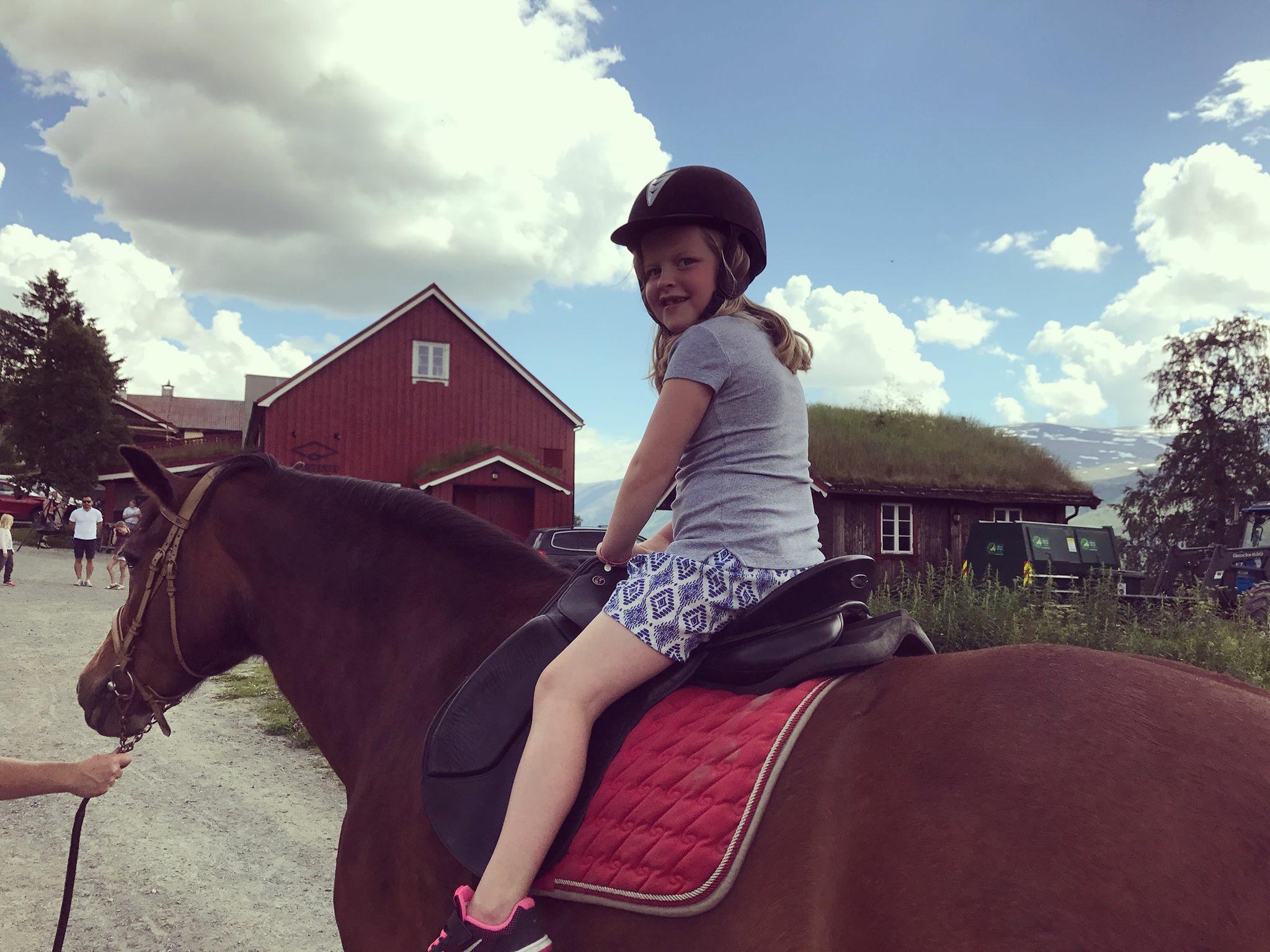 julie hest.JPG