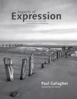 Aspects of Expression - 2008