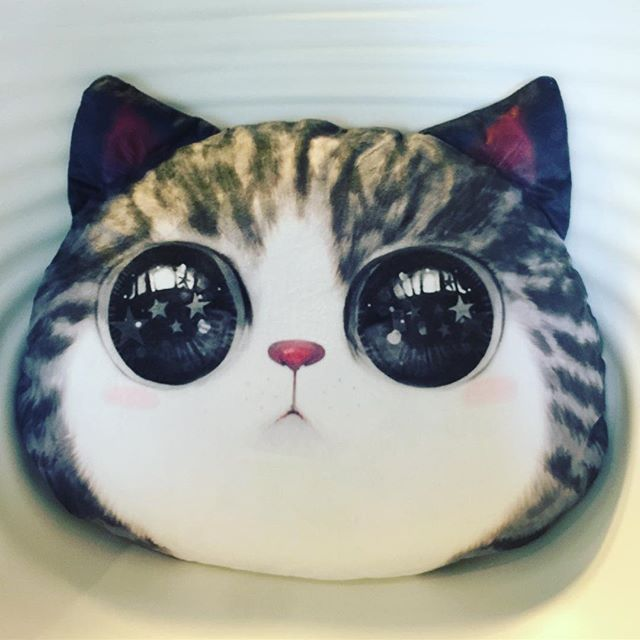 My new cushion (How I look like) #homedeco #淘寶造物節 #pet #cat