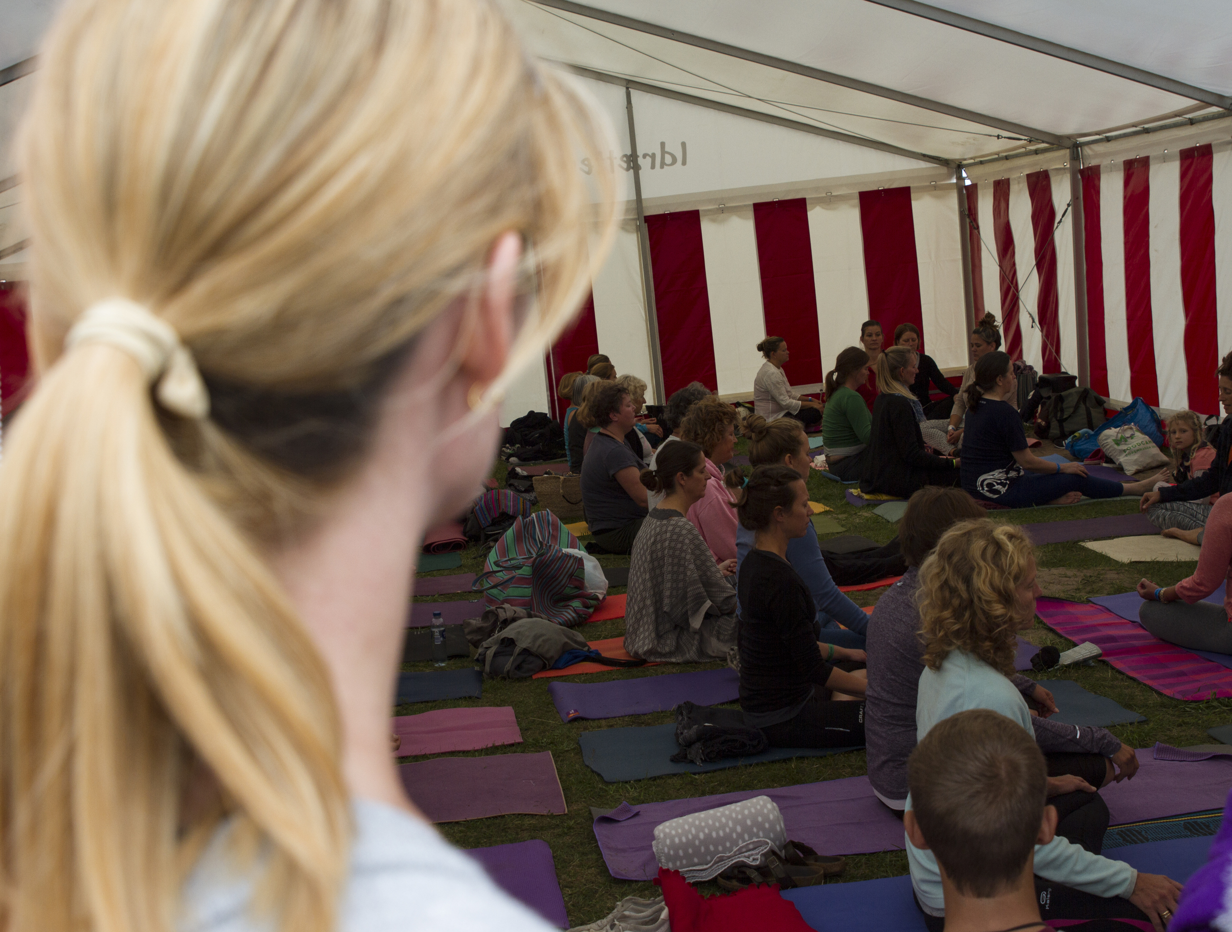 yogafest16.jpg