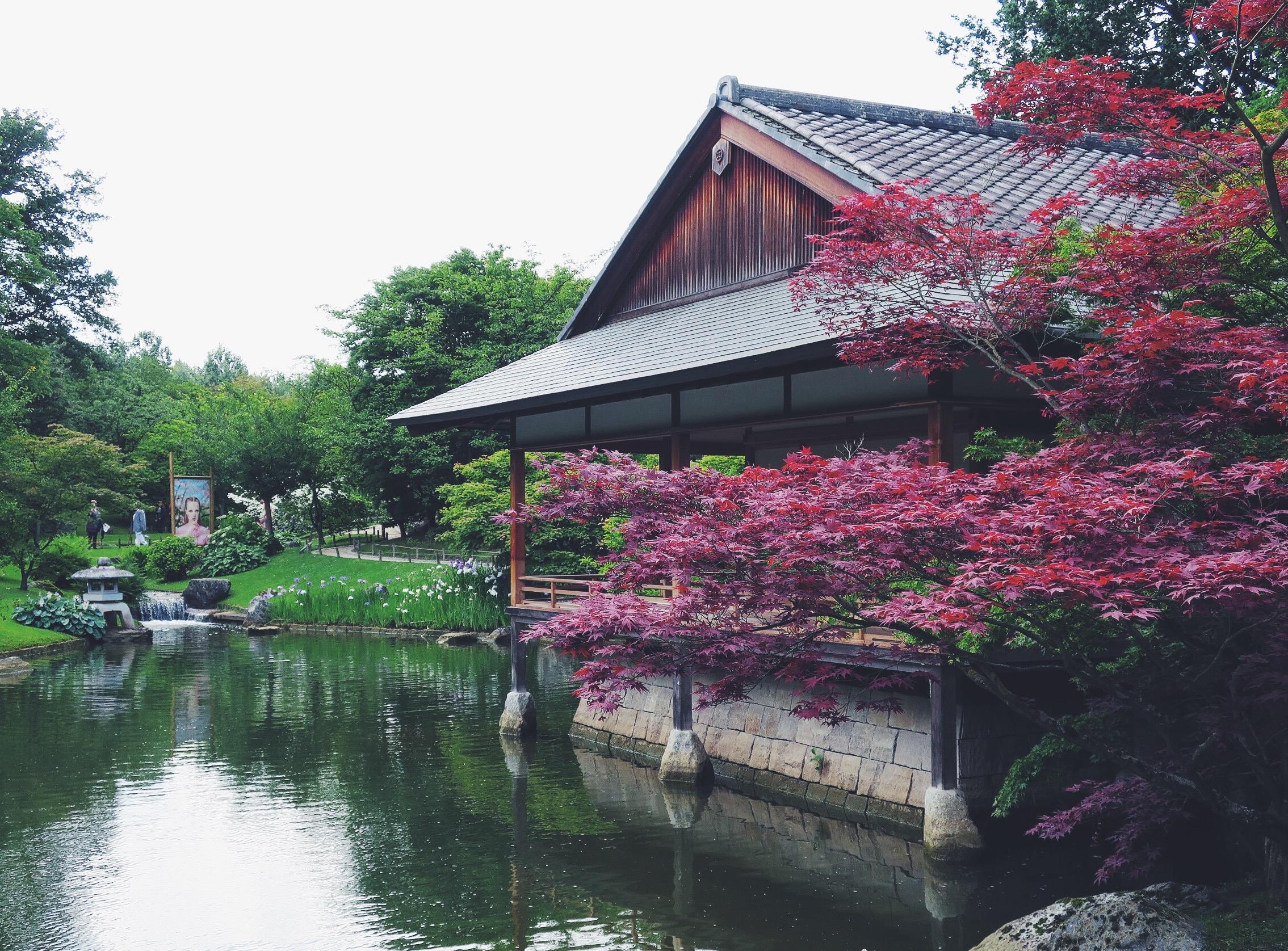 Japanese Garden Hasselt