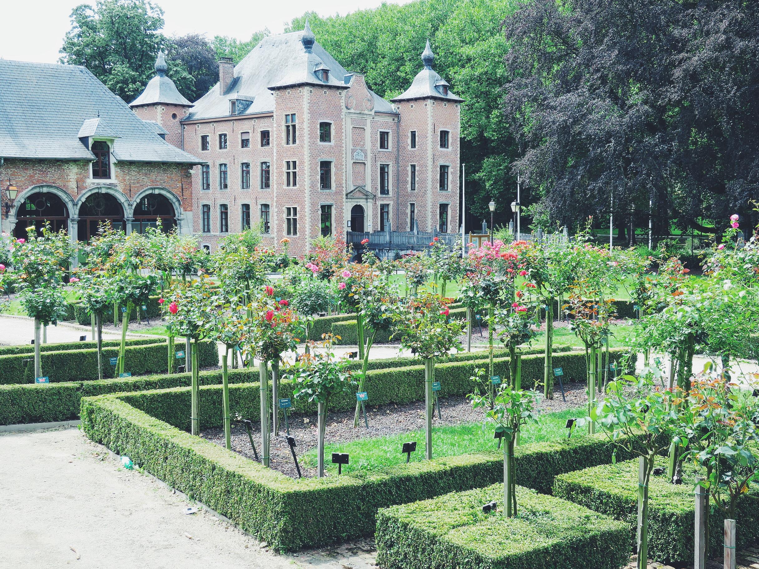 Coloma Rose Garden