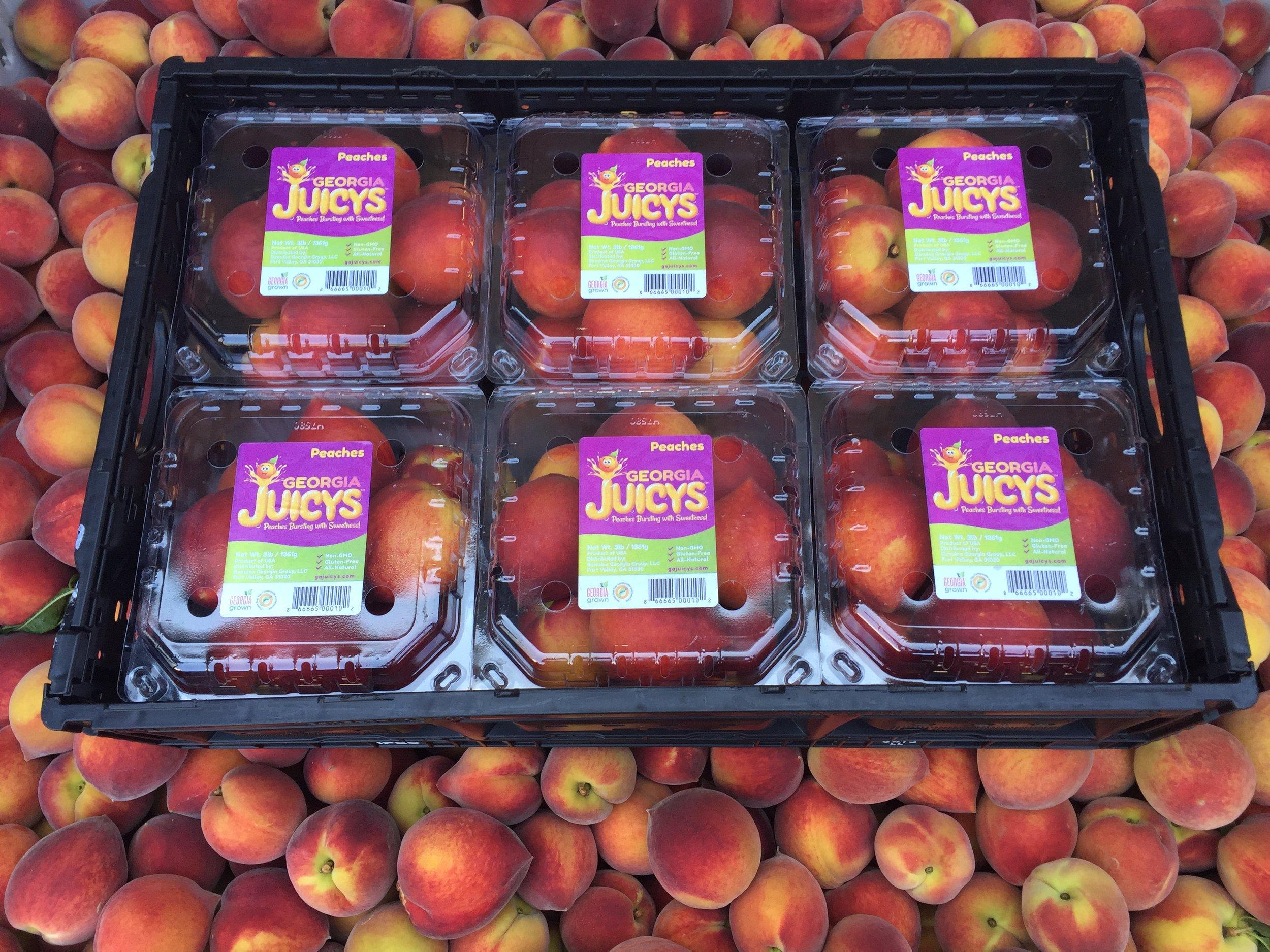 Juicys in RPC.JPG