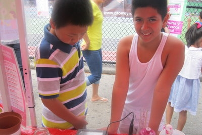 New Brooklyn School Focuses on Sustainability - Brooklyn Downtown Starby Andrew Pavia  Aug 29, 2012