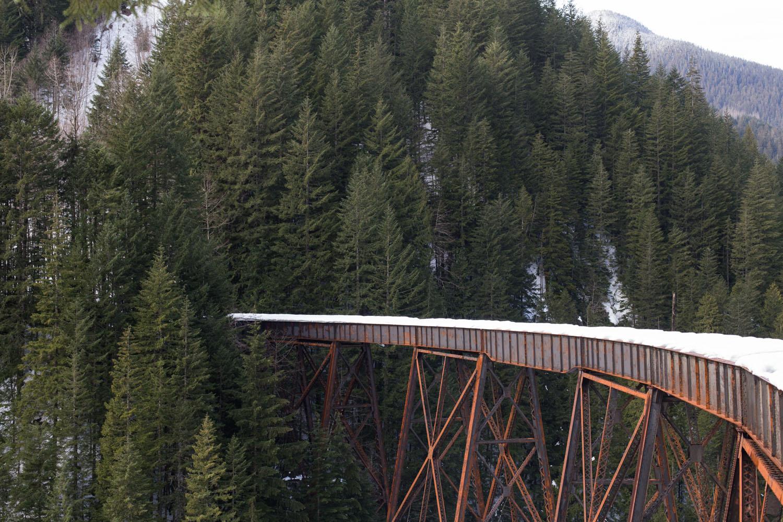 Trestle Creek Blog-4814.jpg