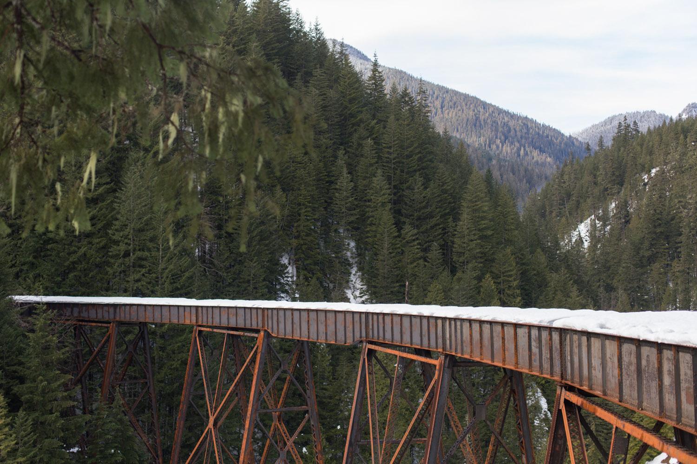 Trestle Creek Blog-4827.jpg