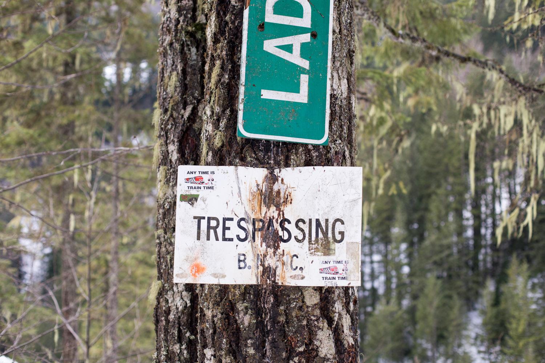 Trestle Creek Blog-4841.jpg