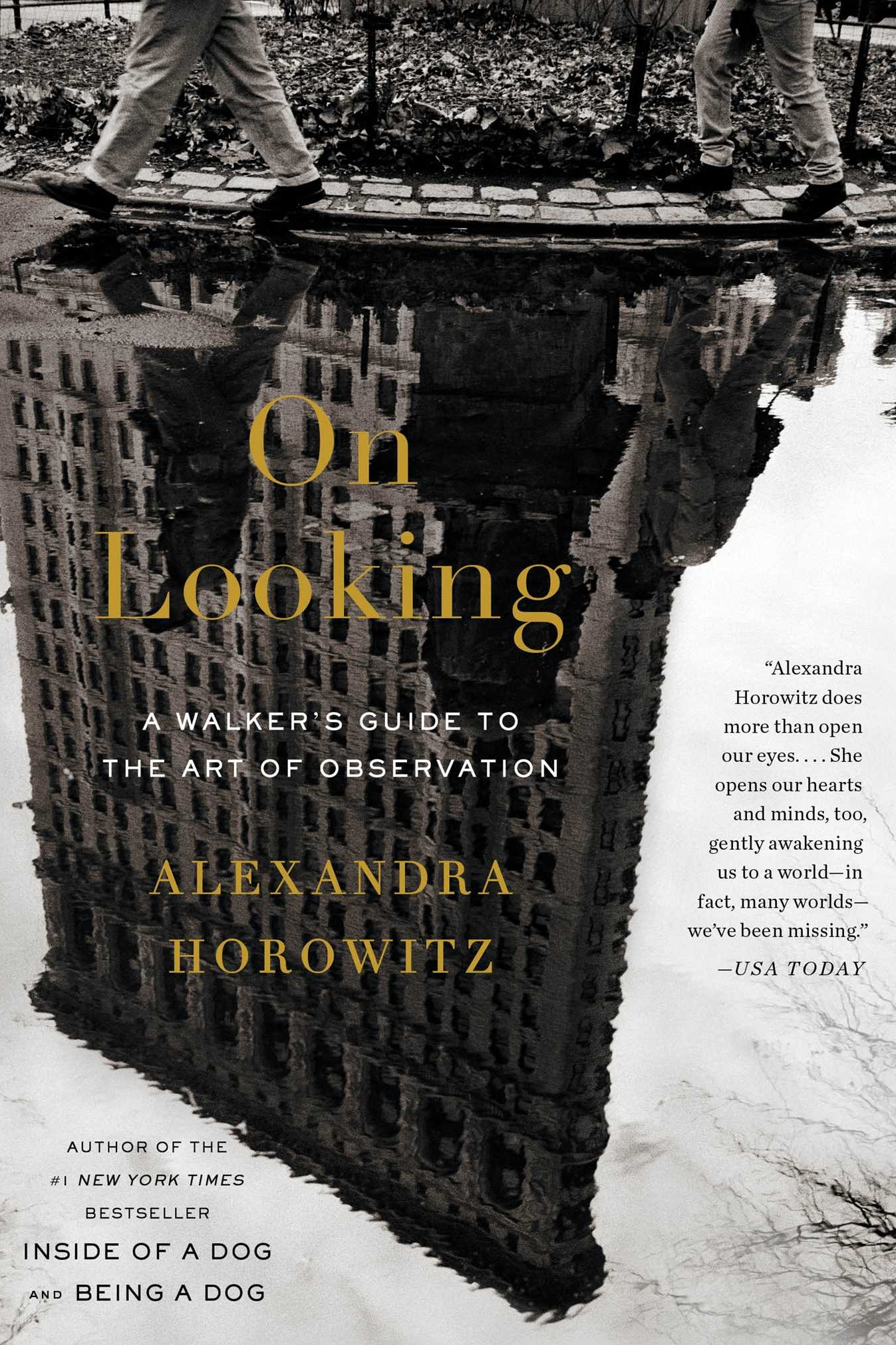 On Looking by Alexandra Horowitz   See New York city through twelve sets of eyes as psychologist Horowitz joins professionals to walks its blocks. Her quest is to better understand inattention and I enjoyed the points she raised. Some of my favourite chapters were when she walked with a typographer, a physician and a blind lady. The pace of this book is gentle and at times ambling, but I enjoyed the writing style so that was fine by me.  Recommend?  Yes