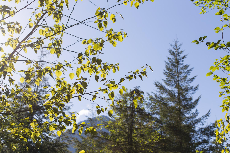Lake Chilliwack Camping-6866-2.jpg