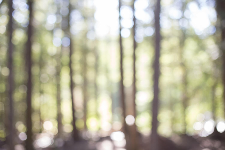 Squamish-Whistler-7494.jpg