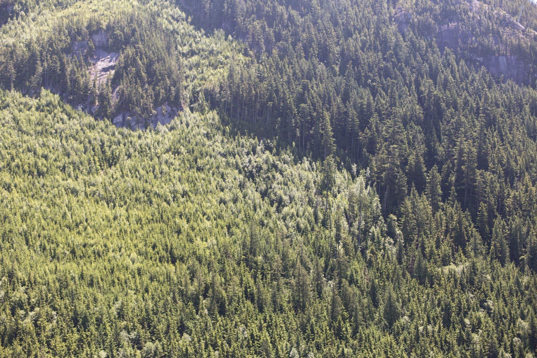 Squamish-Whistler-7740.jpg