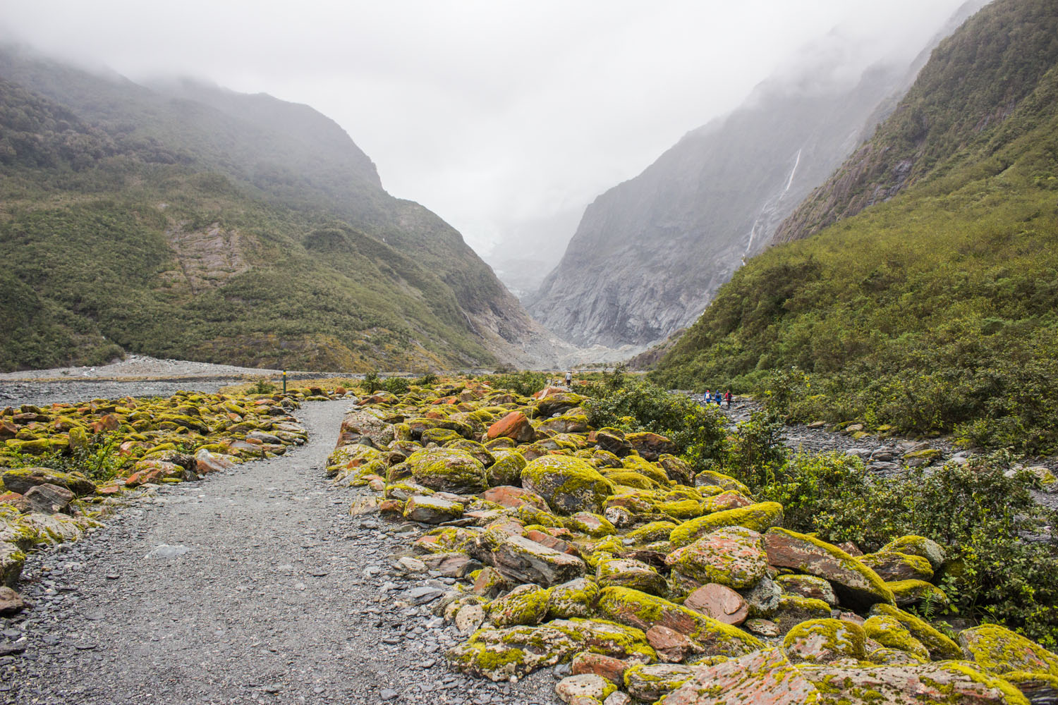 Outsized by nature in this valley with its distant glacier • Franz Josef Glacier, New Zealand •