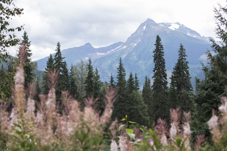 Rockies blog-9049.jpg