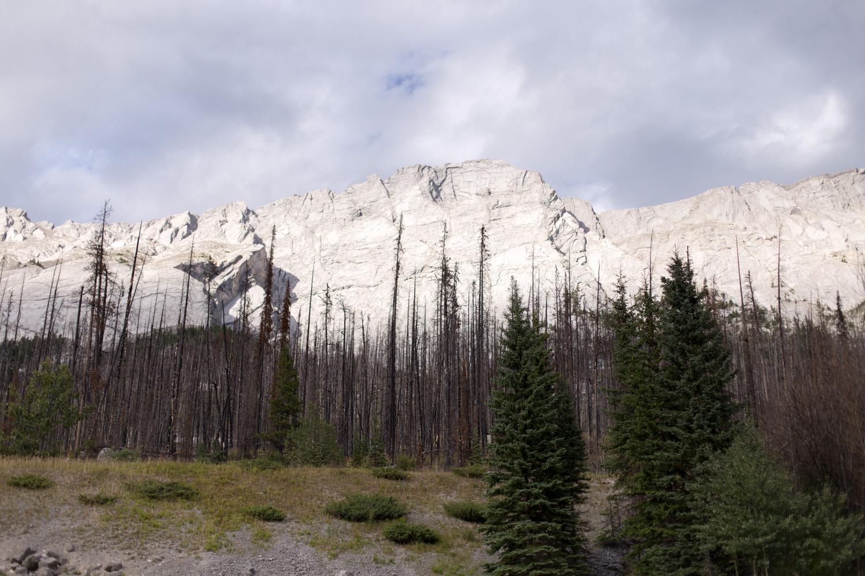 Rockies blog-9231.jpg