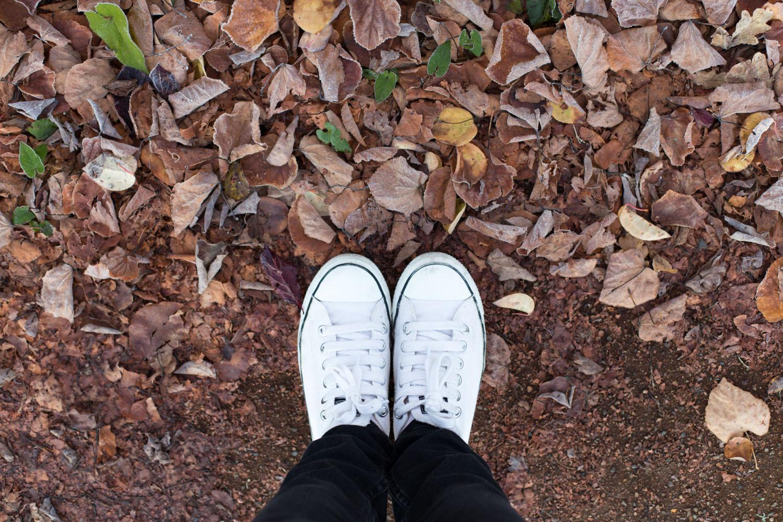 From Where I Stood blog-2536.jpg