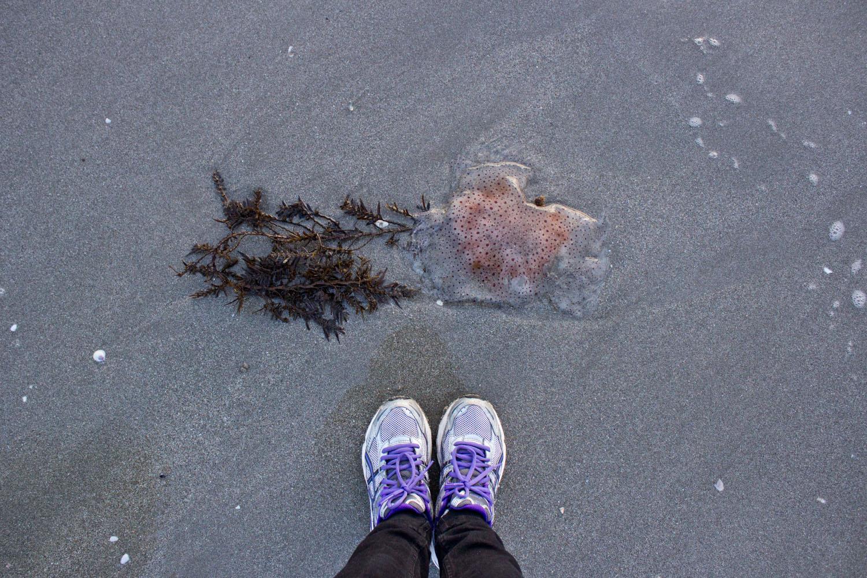 From Where I Stood blog-8019.jpg