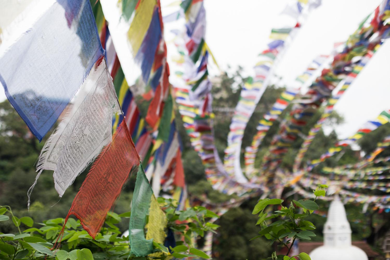 Nepal blog-3414.jpg
