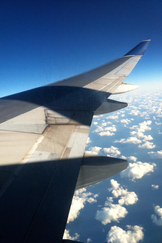 Plane Windows blog-5228.jpg