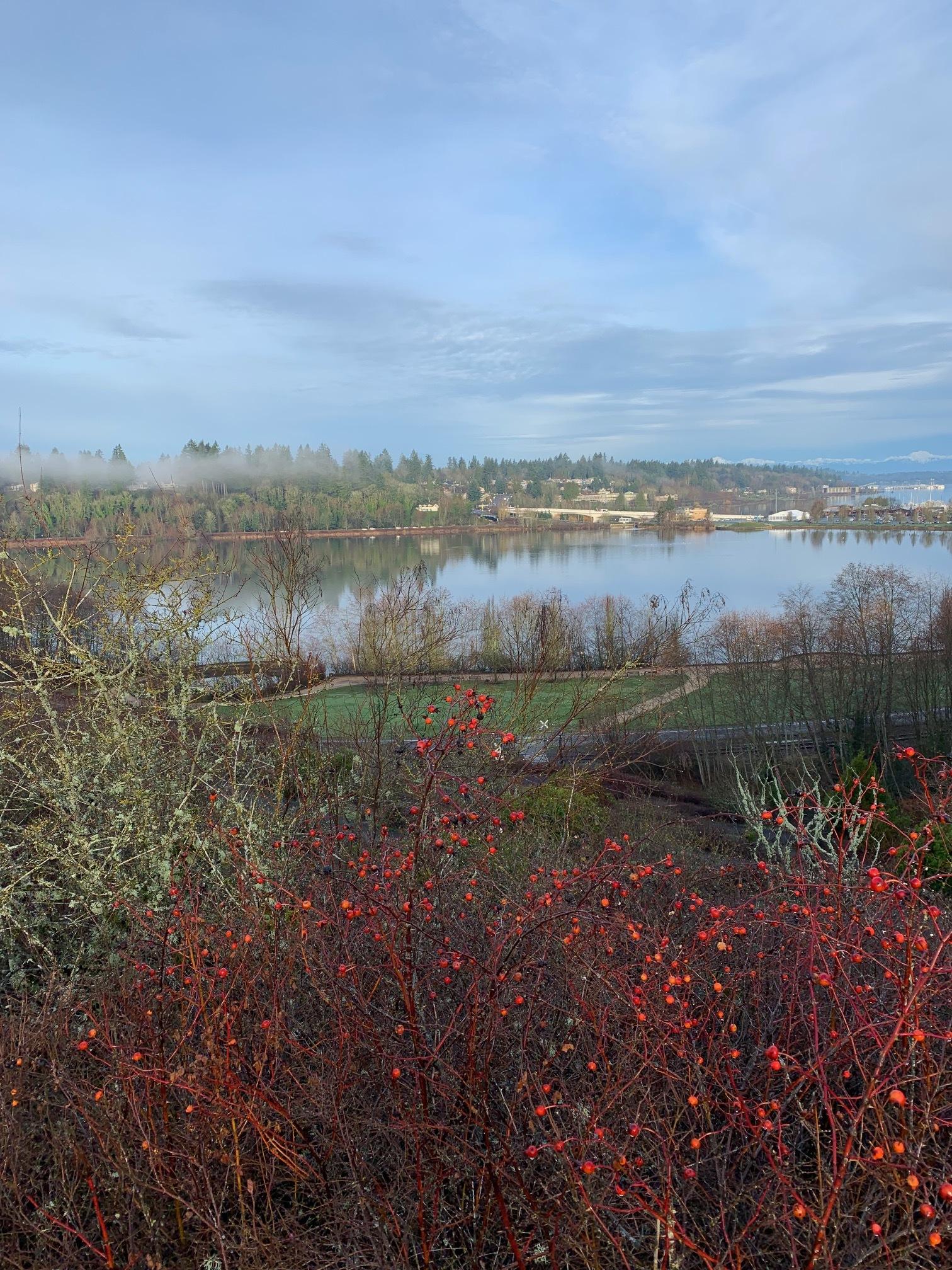 Capitol Lake and West Olympia: Courtesy - Candi Millar