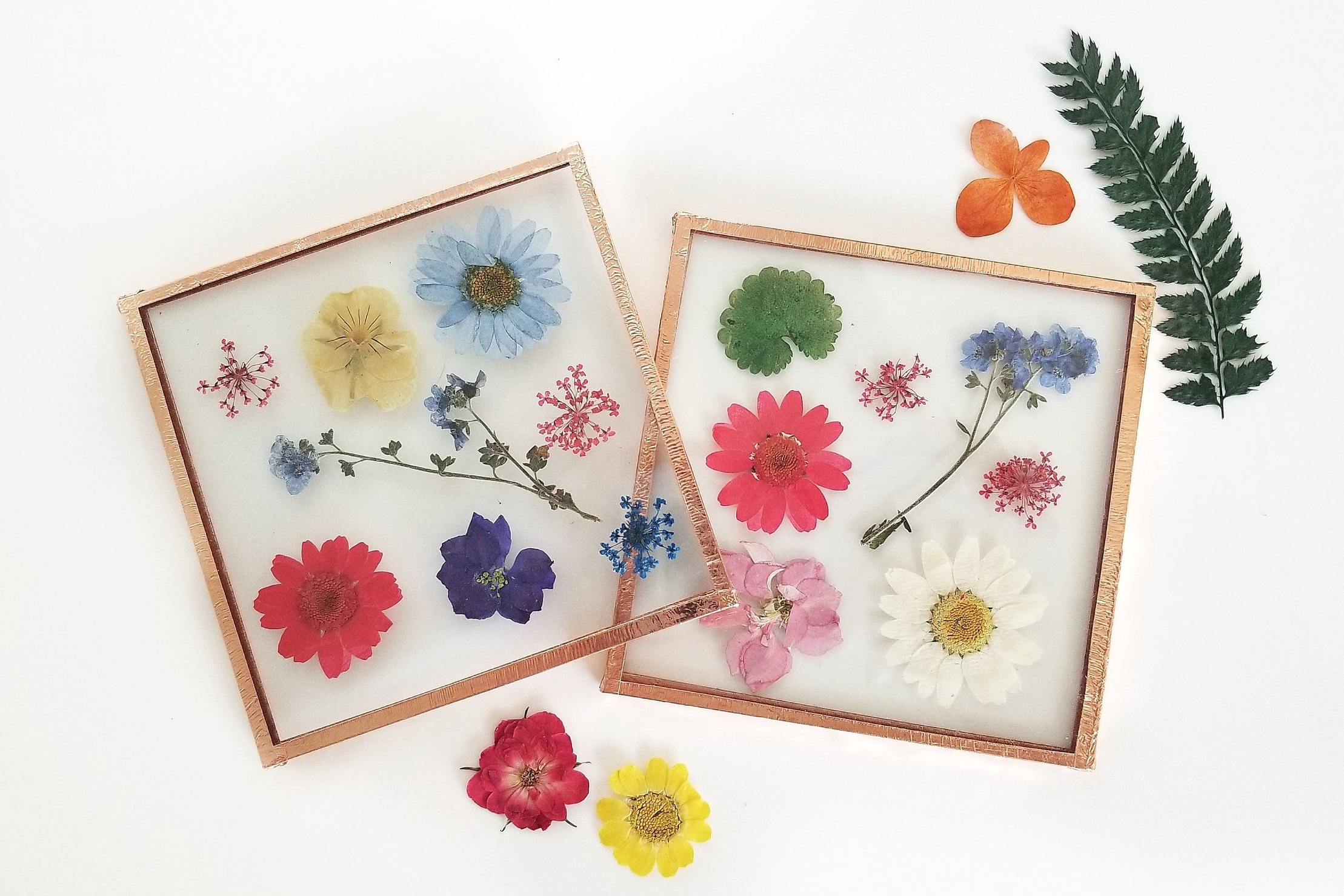 pressed-flowers-workshop-portland